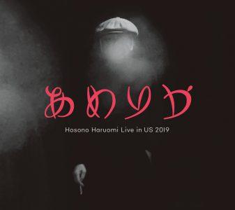 細野晴臣のライブアルバム「あめりか」